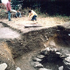 Excavation site (Photo - Courtesy)