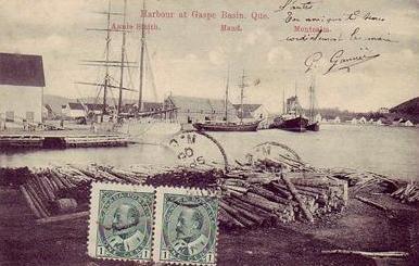 Le port / The harbour