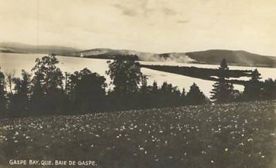 Baie de Gaspé / Gaspé Bay