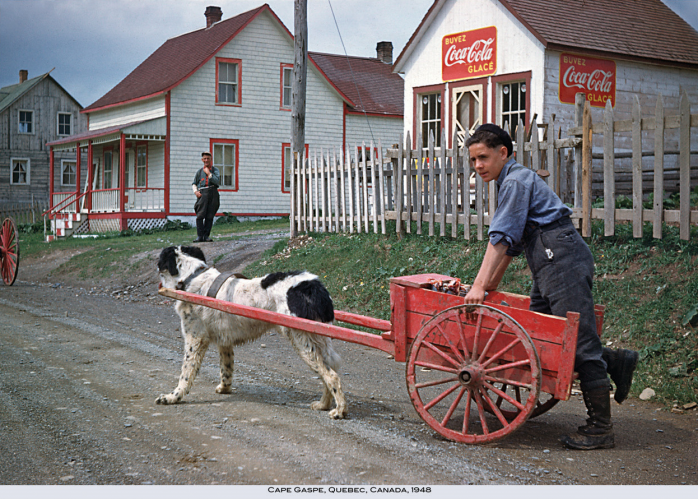 Boy and dog cart, Cape Gaspé, 1948. Photo - Verle F. Brower / courtesy of Bill Bojanowski.