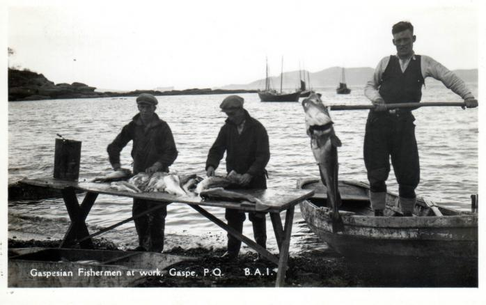Gaspesian Fishermen at Work, c.1920 / Pécheurs gaspésiens au travail, Gaspé, v.1920