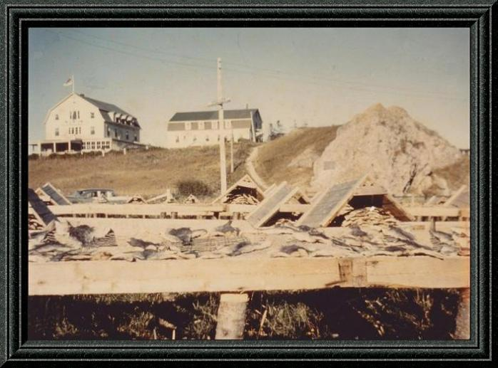 Percé Rock House (Hotel) and Annex, c.1950. This photograph was submitted by Douglas Bisson whose grandfather built this hotel. The annex now houses the Percé town hall.