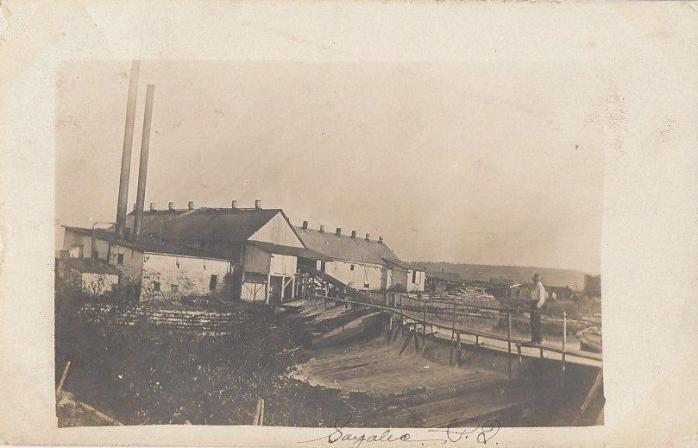 Moulin sciage du bois Fenderson, Sayabec, 1909 / Fenderson Sawmill, Sayabec, 1909