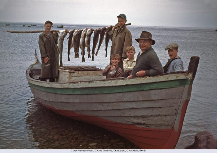 Cod fishermen, Cape Gaspé, 1948. Photo - Verle F. Brower / courtesy of Bill Bojanowski.