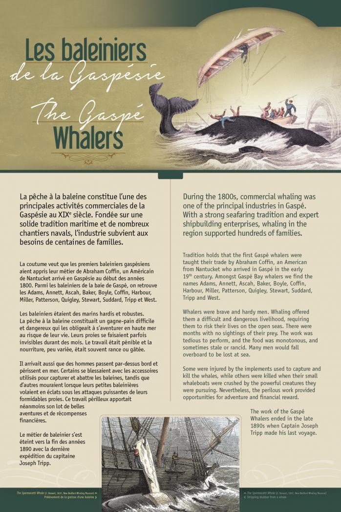 The Gaspé Whalers / Les baleiniers de la Gaspésie