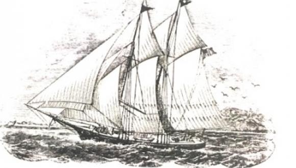 The Whalers of Gaspé Bay