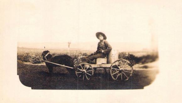 Voiture de laitier, Sayabec, 1907 / Milk wagon, Sayabec, 1907